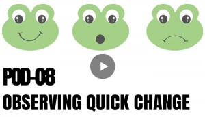 POD 8 Observing Quick Change