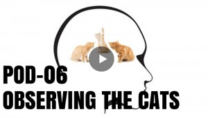 POD 6 – Guided Meditation for Overthinking and Compulsion POD 6 Observing the Cats